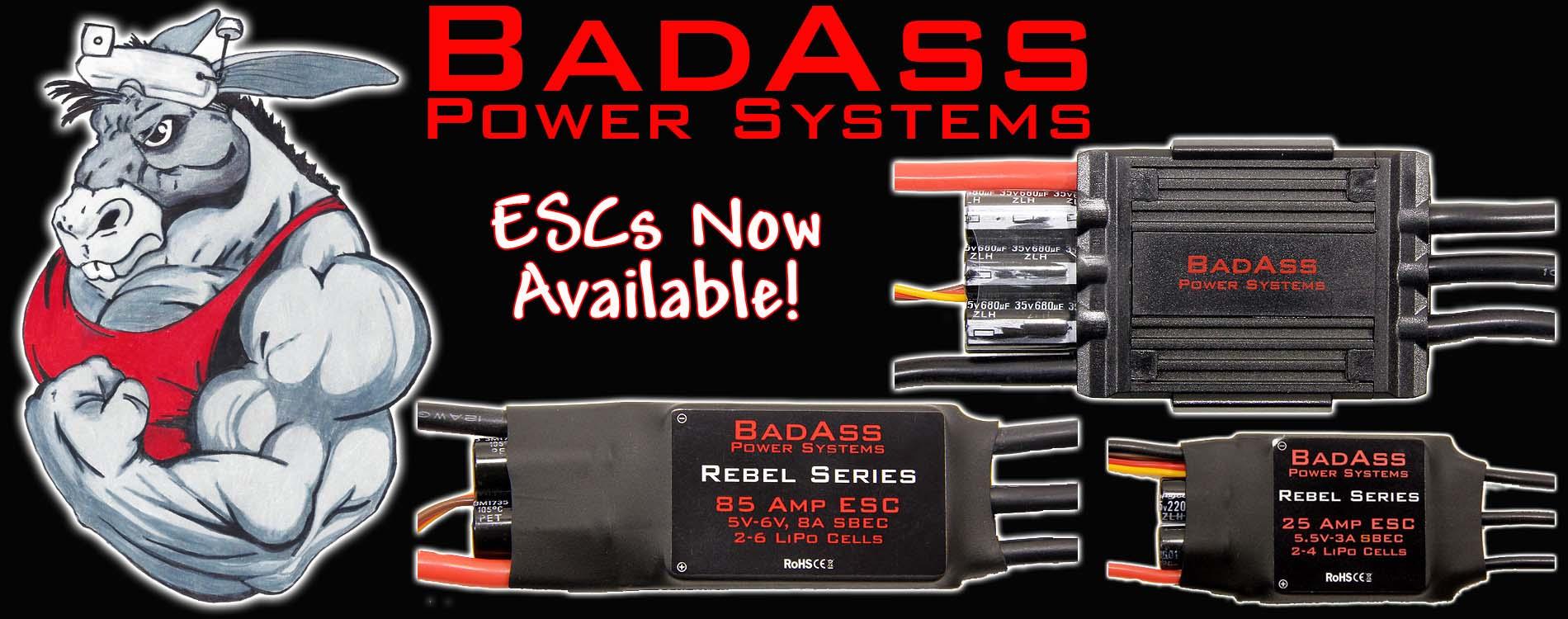 BadAss ESCs